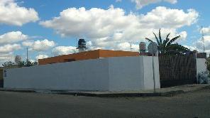 4,800 MXN|Ciudad Caucel|Ref.: 7913/678