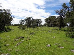 1,450,000 MXN|San Isidro Piedras Negras|Ref.: 1423/280