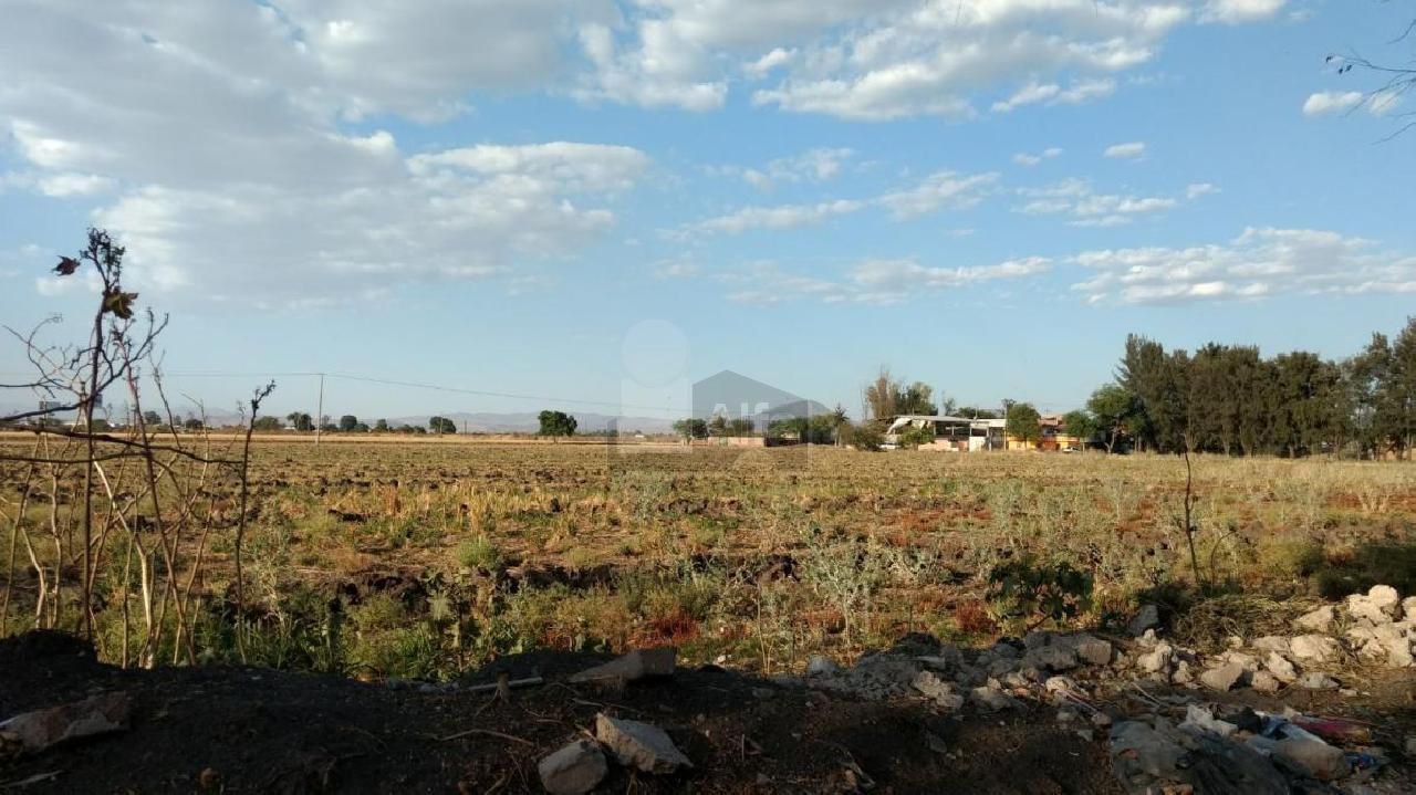 Terreno en Venta en Rancho Grande, Irapuato